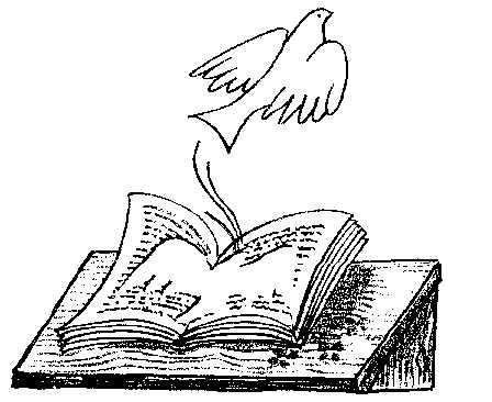 El sentido de este espacio dans El sentido de este espacio educar-palomas